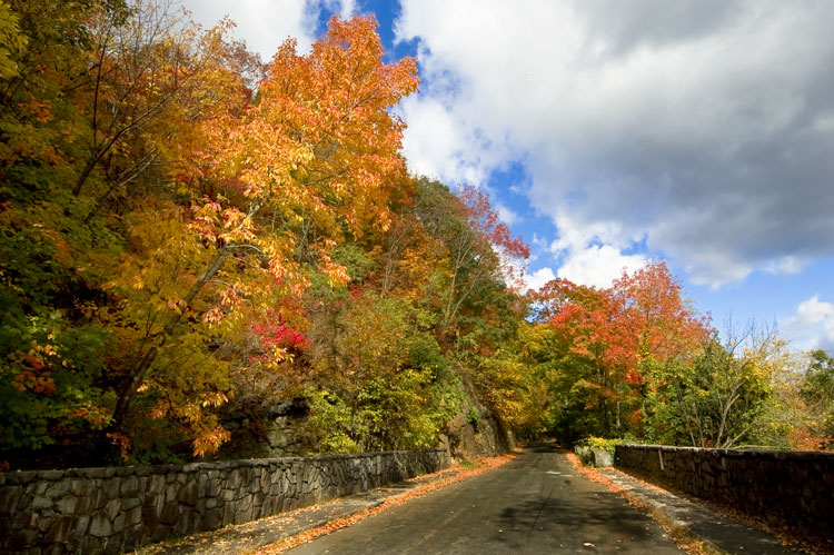 Cars On Line >> Henry Hudson Drive | Palisades Interstate Park in New Jersey